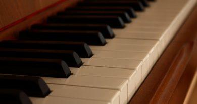 No interno de um piano existem cordas esticadas e presas a outra estrutura.
